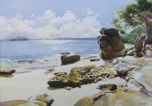 Afternoon Light - Milk Beach Sydney Harbour