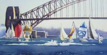 Jostling For Position - Sydney Harbour
